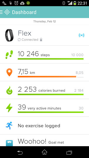 fitbit-flex-screenshot