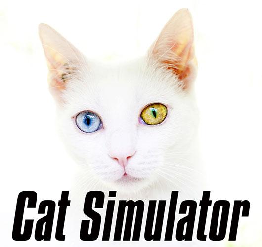 macskaszimulator